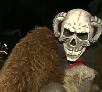 monstre-empaille